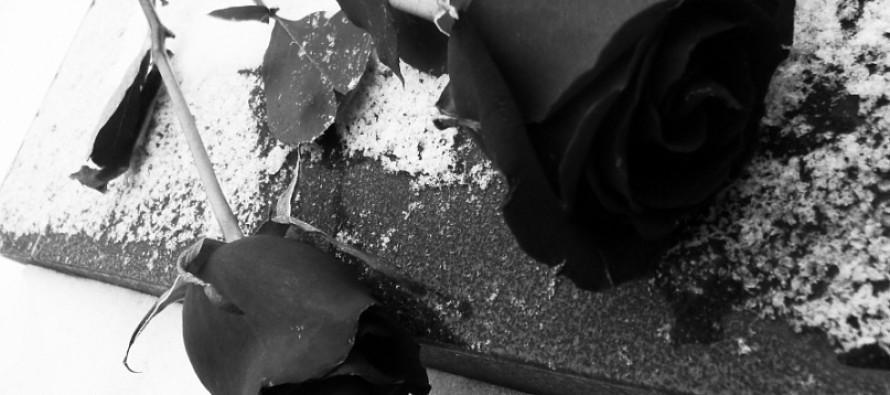 3 года жизни за 25 роз