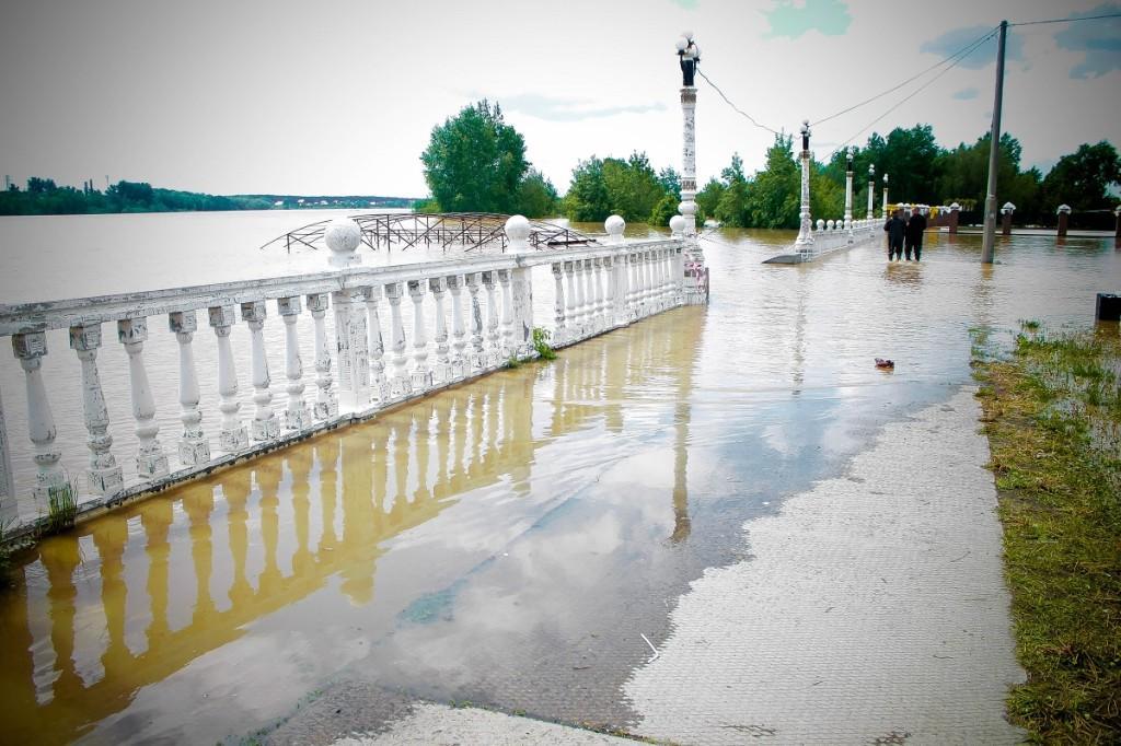 После наводнения построят дамбу в Бийске