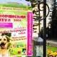 Выставка беспородных собак. 17.08.14