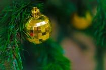 План официальных новогодних мероприятий
