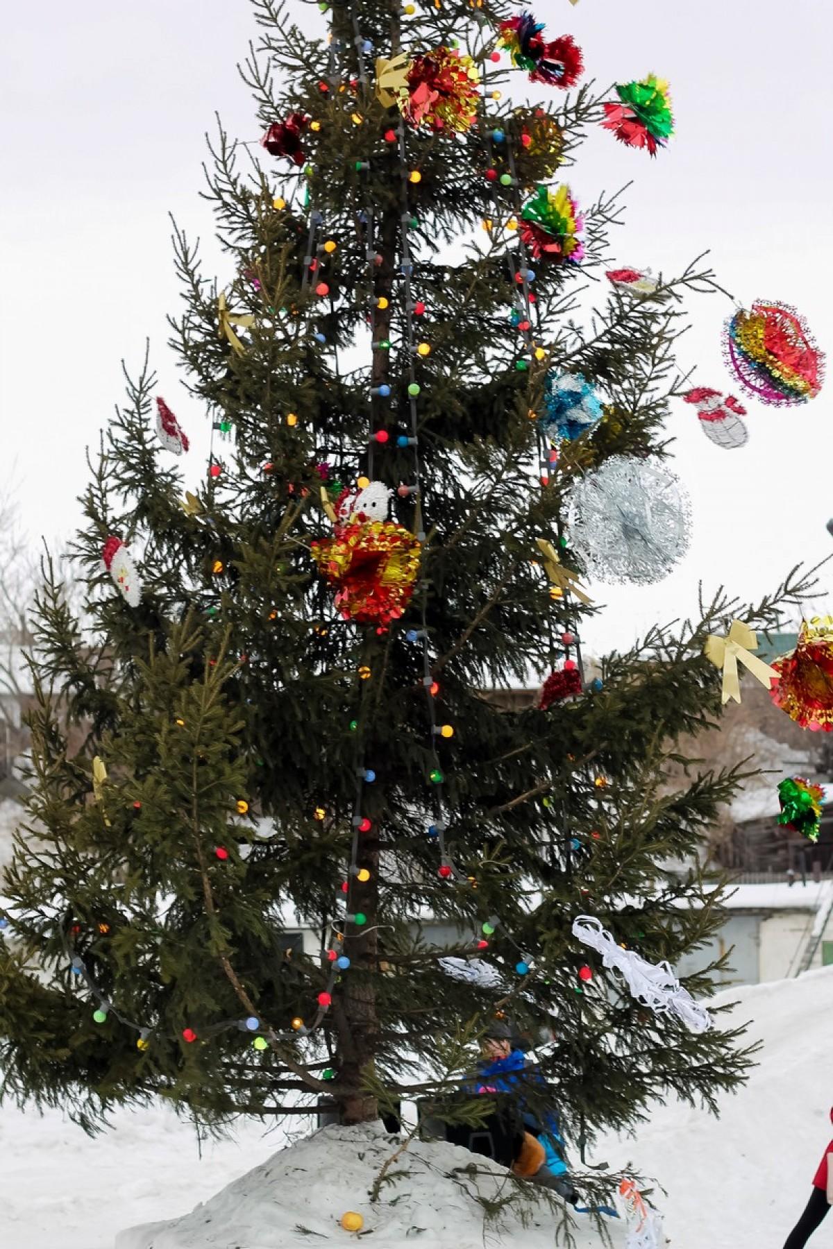 Открытие елки на Зеленом клине. 26.12.2014