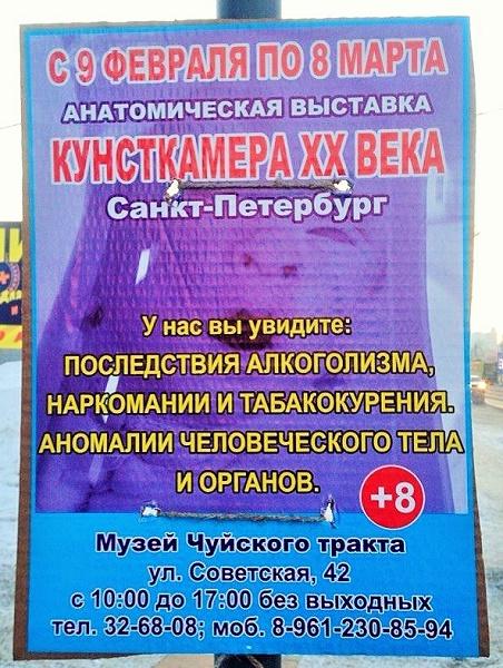 """Анатомическая выставка """"Кунсткамера XX века"""" в Бийске"""