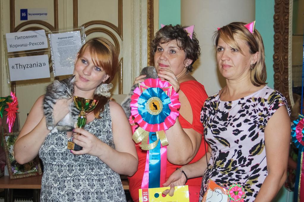Фотографии с выставки кошек в Бийске