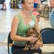 Выставка кошек. 19 июля 2015 года