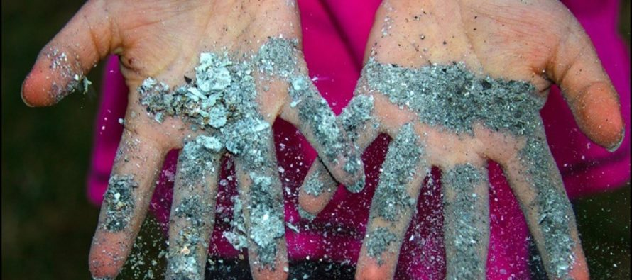 Житель Алтая забил до смерти падчерицу за разбросанную золу