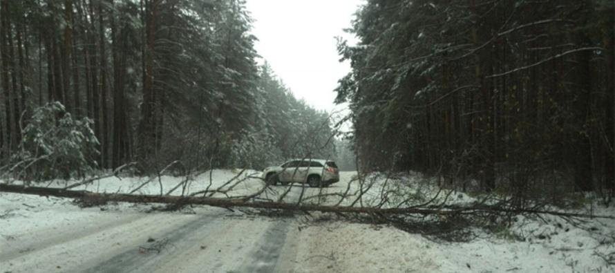 На Бийск обрушился снежный ураган