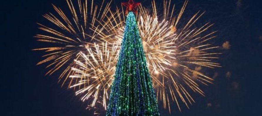 Главную новогоднюю елку в Барнауле в декабре 2016 года смонтируют на площади Сахарова
