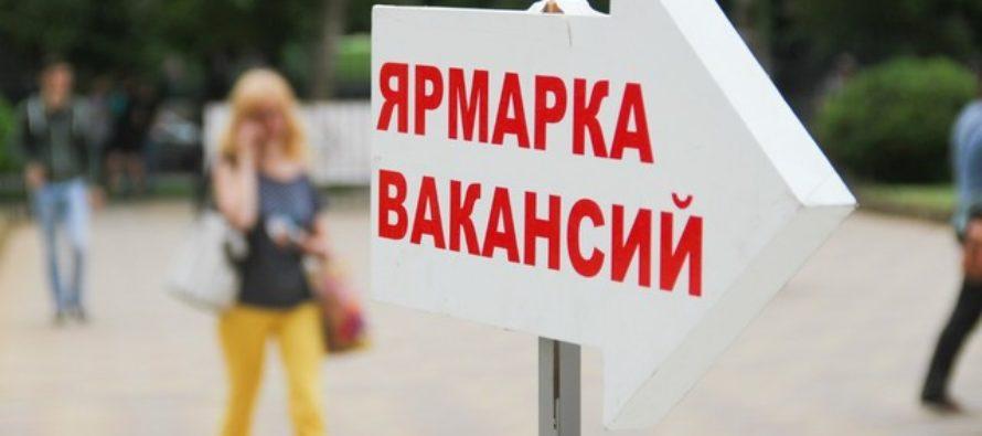 В Бийске прошла краевая ярмарка вакансий
