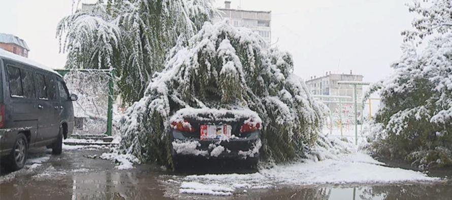 Последствия сильного снегопада в Бийске