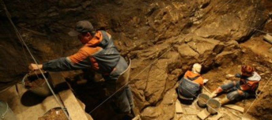 Ученые нашли на Алтае орудие труда древнего портного