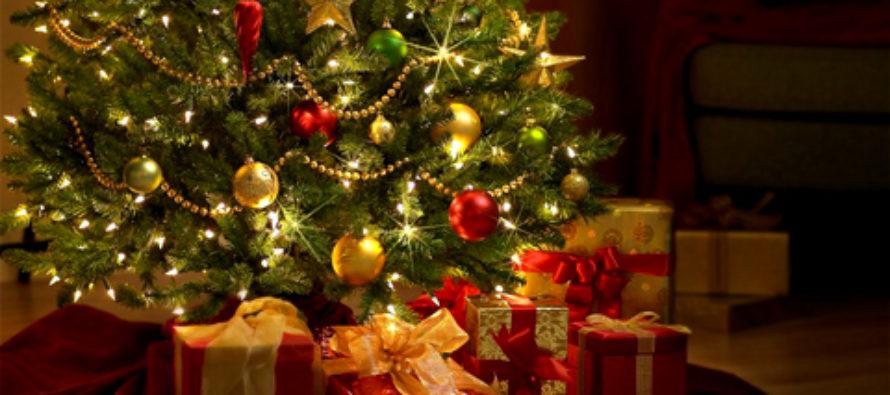 Новогодняя елка в Бийске должна быть не меньше 15 метров