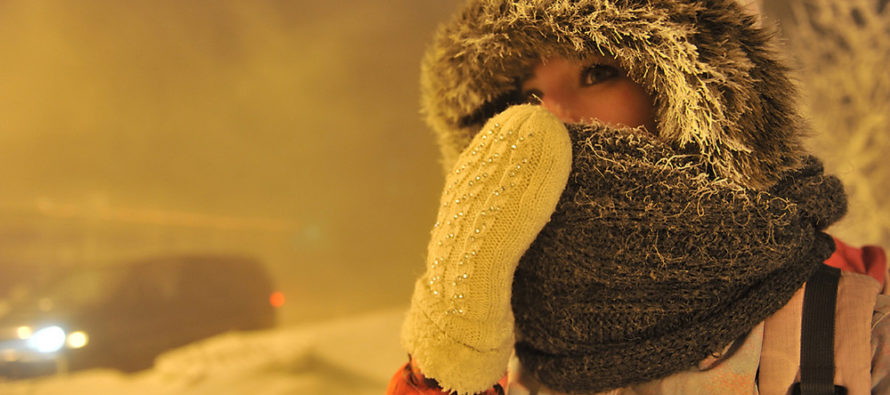 В Алтайском крае организована «горячая линия» по обеспечению необходимого температурного режима в учреждениях образования