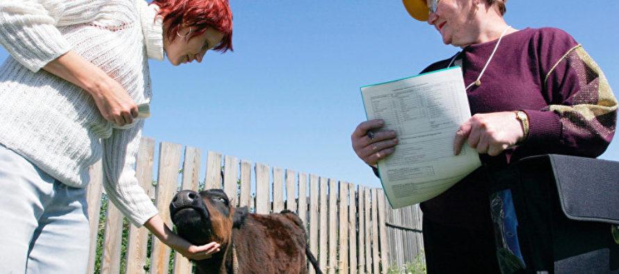 В Алтайкрайстате обсудили итоги Всероссийской сельхозпереписи