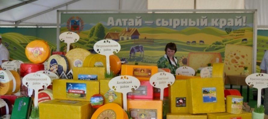 Каждая шестая головка сыра в стране производится на Алтае — Карлин