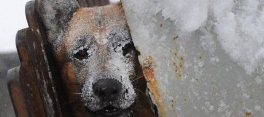 В Алтайском крае сильно похолодает