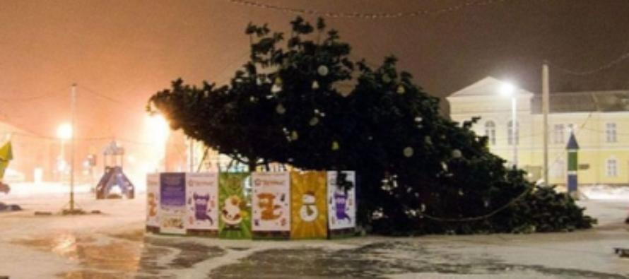 В Бурятии упавшая новогодняя елка повредила три автомобиля