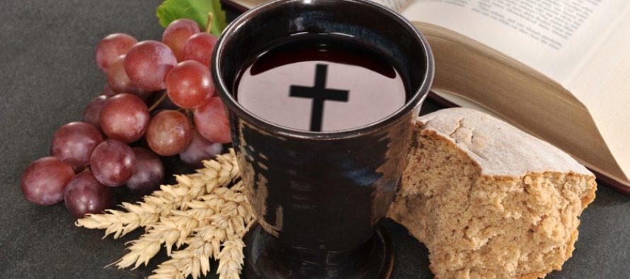 На Алтае будут производить хлеб и вино по новейшим технологиям