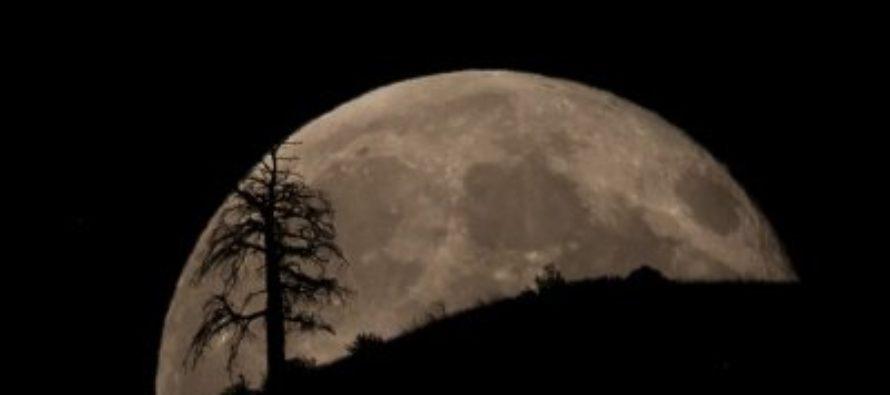 Жители Земли в ночь на 14 декабря увидят последнее суперлуние в этом году