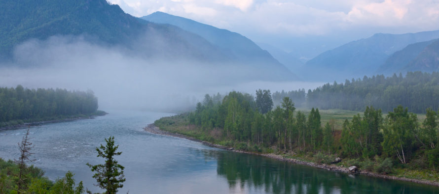 Алтайский край вошел в десятку регионов-лидеров по темпам развития туризма