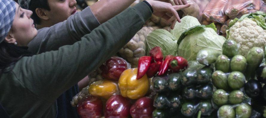 В 2016 году импорт овощей в Алтайский край сокращен почти на 60%