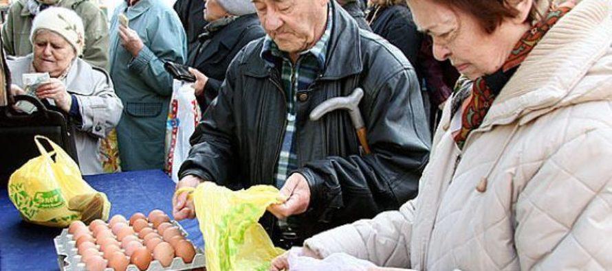 Очередная социальная ярмарка в Бийске состоится 24 декабря