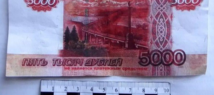Жительница Алтая отдала долг односельчанке билетом «банка приколов»