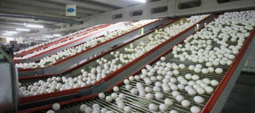 Предприятия Алтайского края работают с прибылью, увеличивая загрузку производственных мощностей и объем заказов