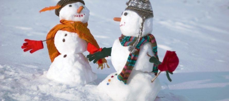 Как провести выходные и куда барнаульцам сходить 17 и 18 декабря?