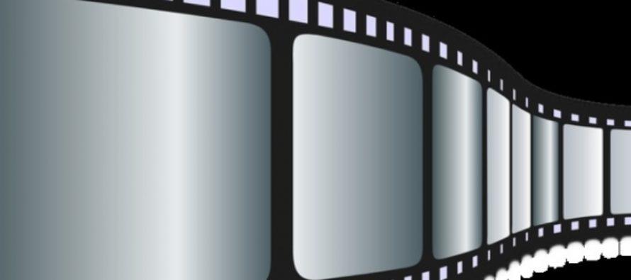 Times: «Лунный свет», «Патерсон», «Лавинг» – лучшие фильмы года