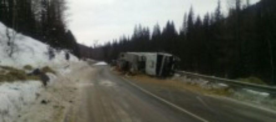 На Чуйском тракте погиб водитель