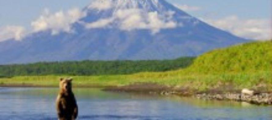 Жители Алтая захотели бесплатной земли на Дальнем Востоке
