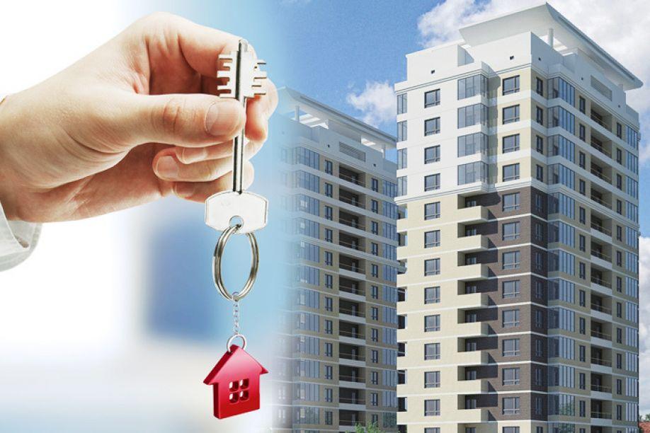 них сколько будет стоить приватизация квартиры через агентство это