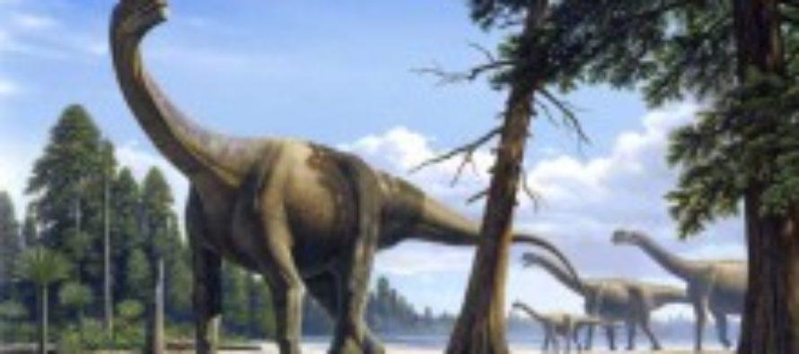 Найден самый большой след динозавра