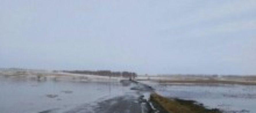 На Алтае начался весенний потоп