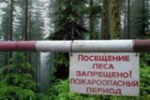 Особый противопожарный режим в Алтайском крае сохраняется