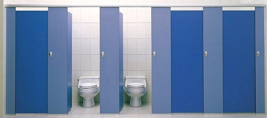 Виды и особенности перегородок для туалета