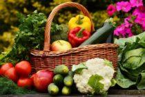 Как найти качественные семена овощей и цветов