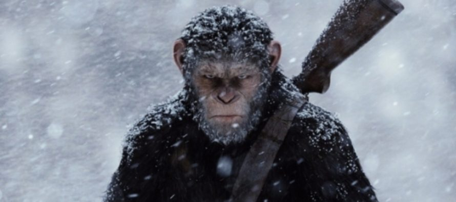 Новая «Планета обезьян», «Блокбастер» и другие премьеры недели в кино