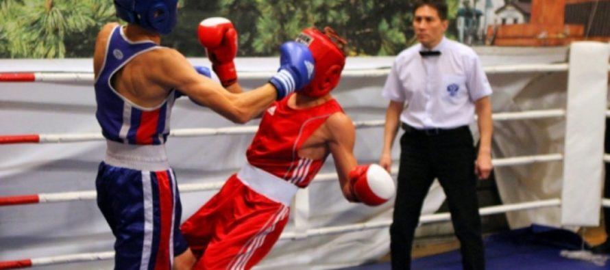 Какие соревнования бывают в боксе?