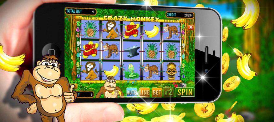 Виды слотов в казино Вулкан