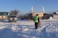 Служебный пес нашел 78-летнюю бийчанку, потерявшую память