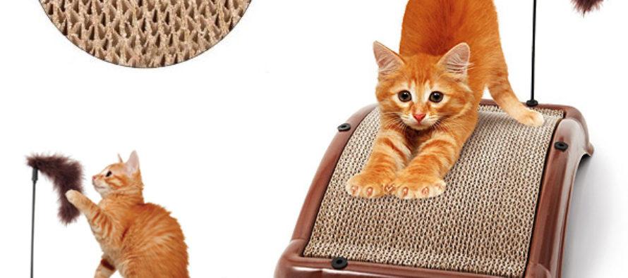 Зачем кошкам нужна когтеточка?