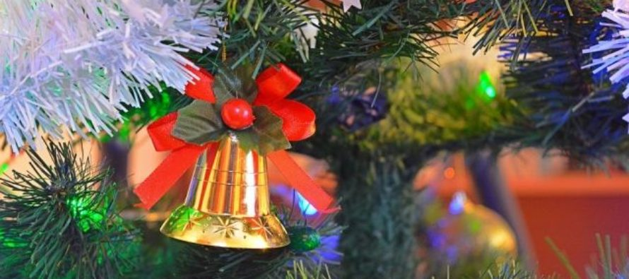 В Барнауле упала новогодняя ель