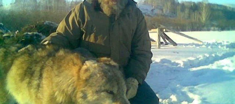 В Сибири не без медведя. Семь историй о визитах диких зверей в сёла