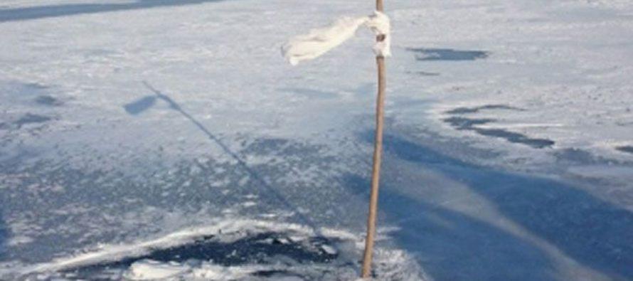 В Алтайском крае 7-летняя девочка провалилась в полынью и утонула