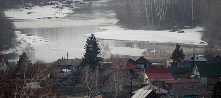 Полред президента в СФО оценил ситуацию с паводком в Алтайском крае
