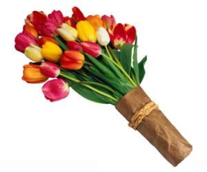Быстрая и качественная доставка тюльпанов по Москве