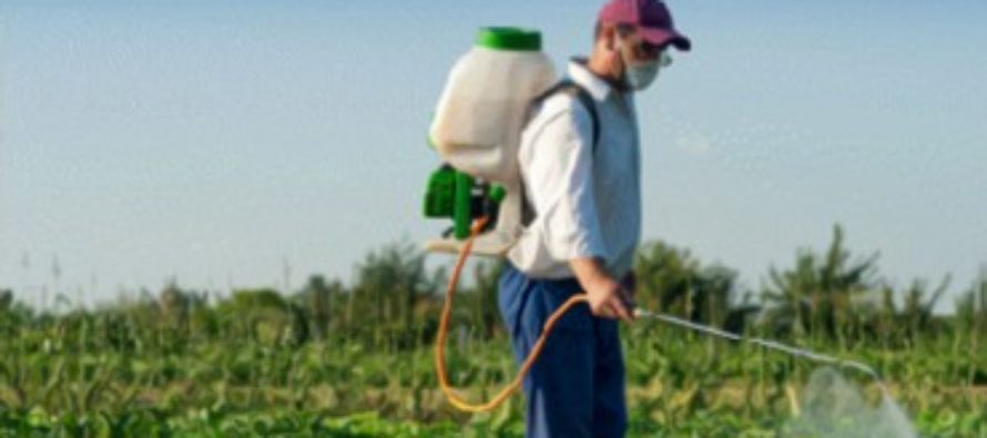 Принцип действия инсектицидов