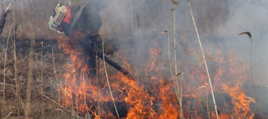 246 поселений Республики Алтай подвержены угрозе природных пожаров