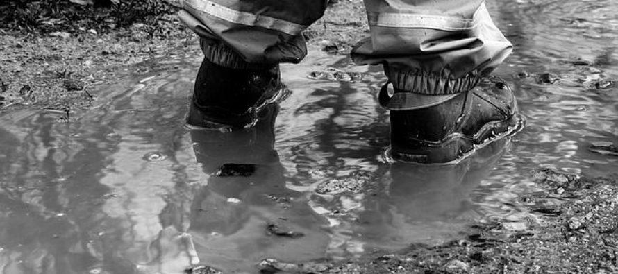 Жителей пос. Борзовая Заимка готовят к эвакуации из-за небывалого паводка